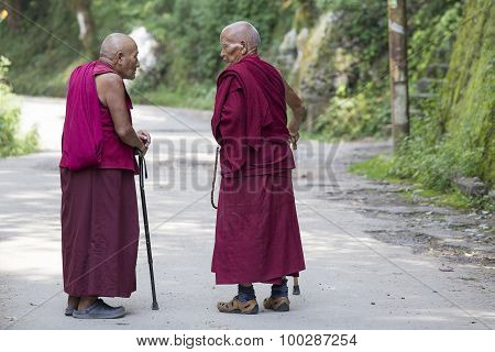 Two Old Tibetan Buddhist Monk In The Dharamsala, India