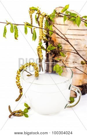 Isolated transparent cup of birch sap on the background of birch trunk