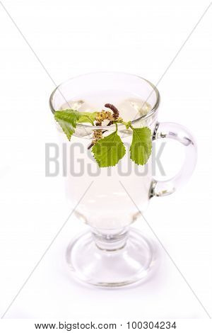 Isolated transparent cup of birch sap decorated with beautiful birch leaves