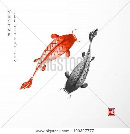 Koi carps hand drawn in Japanese style sumi-e