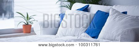 Comfortable Bed With Neat Bedding