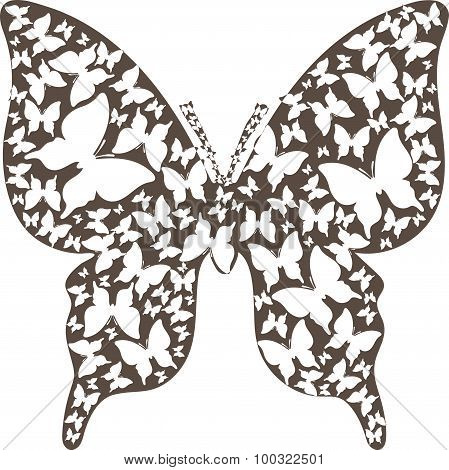 Stencil asymmetry brown outline butterfly from butterflies