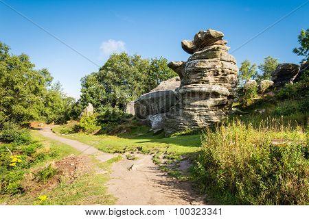 The Dancing Bear At Brimham Rocks