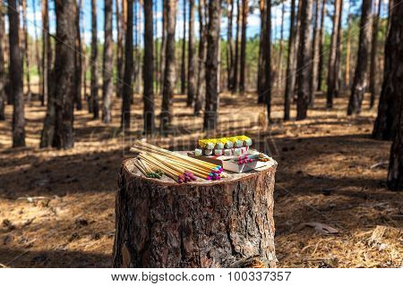 Matches Trees Forest