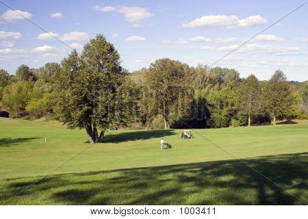 Mid Fairway Golfers