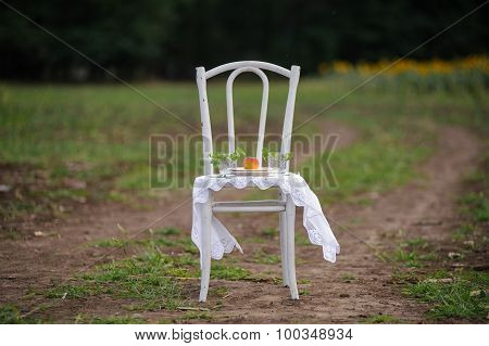 Decorating Vintage White Chair In Nature