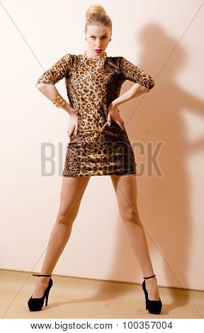 Provocative shot of sexi lady in leopard print mini dress