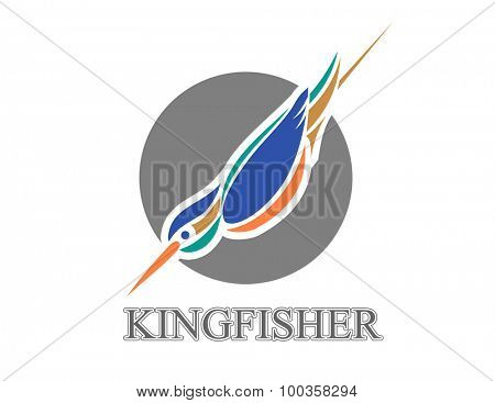 Vector illustration of diving Kingfisher