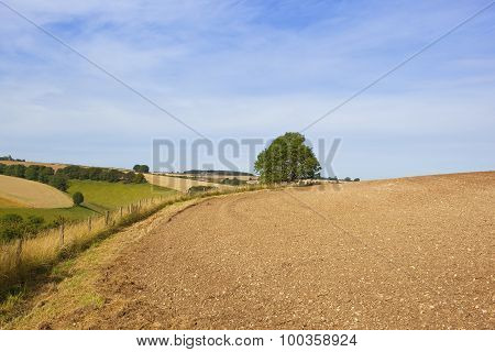 Scenic Yorkshire Wolds Landscape