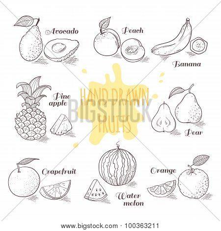 Set Of Hand Drawn Outline Fruits With Slice. Doodle Illustration