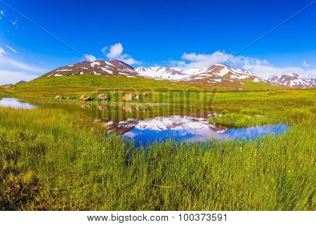 The fields overgrown with fresh green grass. Blue lake water reflects the snowy hills. Summer Iceland