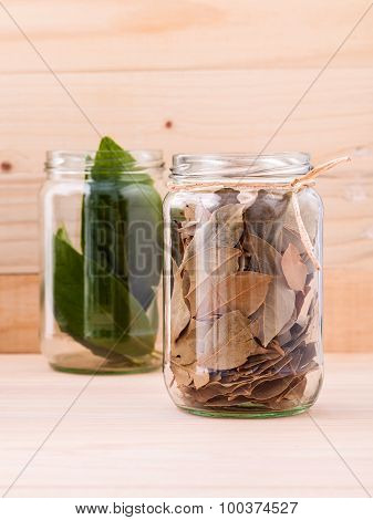Fresh And Dry Bay Leaves In  Bowl On Wooden Background