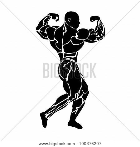 bodybuilding, power lifting, strongman, gym, fitness, vector illustration in flat design for web sit