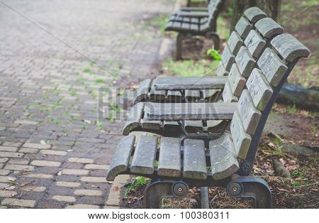 Wooden bench at pubic park in summer