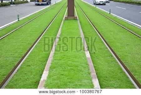 Tramway tracks on green lawn