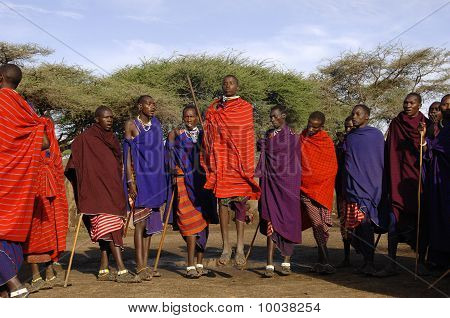 Masai Performing Warrior Dance.