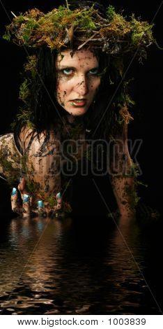 Swamp Princess