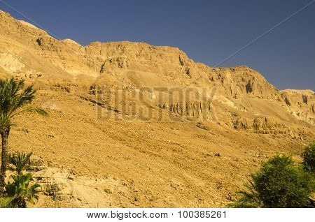 Orange Mountains In Israel Desert