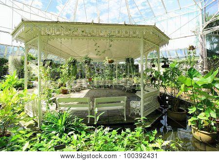White Pavilion Plant In Garden Public