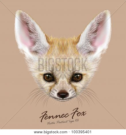Vector Illustrative portrait of Fennec Fox