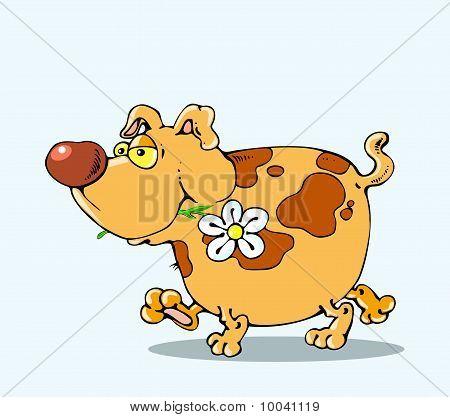 El perro es una flor