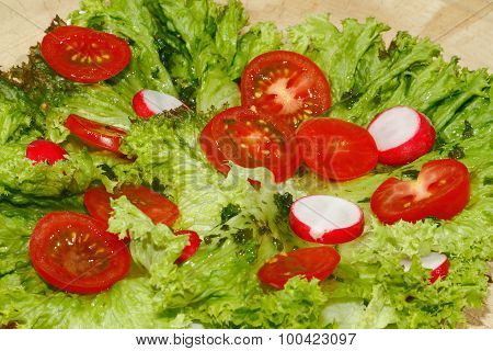 Salad With Radishes And Tomatoes