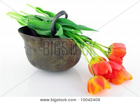 Protective Helmet And Flowers