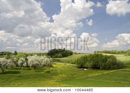 Springs Landscape With Blossoming Apple-trees