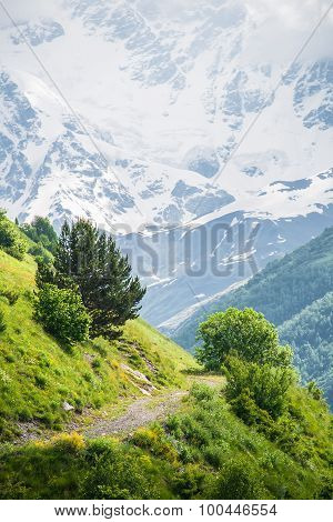 Mountain dirt road and snow covered peak in the background