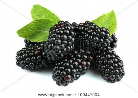 Sweet blackberries with mint isolated on white