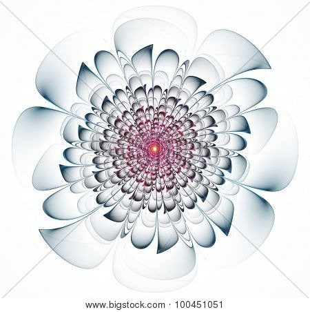 Primitive Fractal Flower Illustration Over White Background