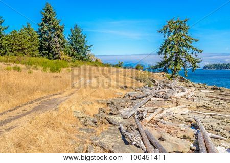 Fragment of lake view trail in Drumbeg park, Nanaimo, British Columbia, Canada.