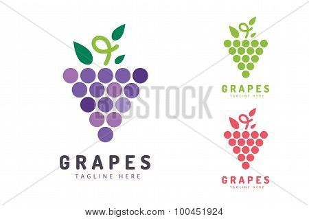 Grapes vector isolated logo icon