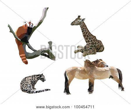 Wild animals II