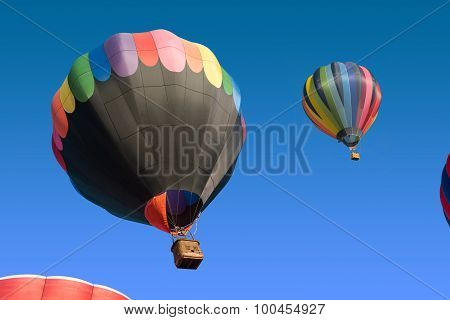 colored hot air balloons
