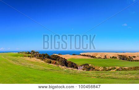 Public golf court. New Zealand.
