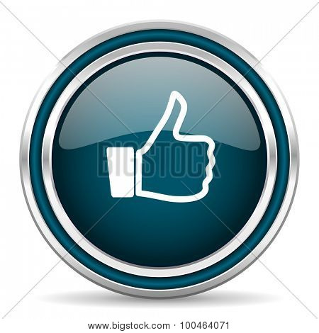 like blue glossy web icon with double chrome border on white background with shadow