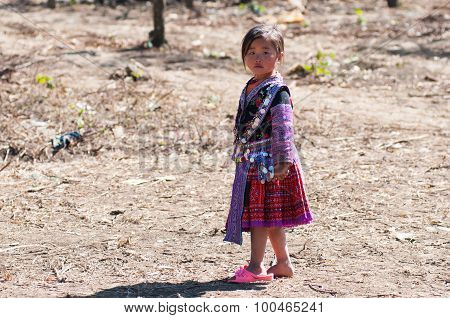 H'mong ethnic little girl in traditional custome in a festival in Moc Chau, Vietnam