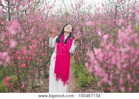 Beautiful Vietnamese girl with traditional dress (ao dai) is in peach flower garden in Hanoi, Vietna