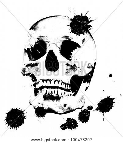 single black skull isolated on white background