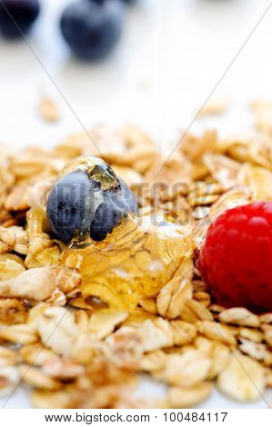Nutritious oats with honey and blueberry and raspberry