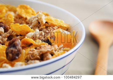 Macro shot of healthy grains and dried fruit in a breakfast cereal