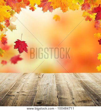 autumn leaves background with wooden planks and copyspace