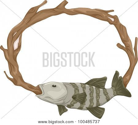 Frame Illustration of a Stuffed Fish Mounted on the Wall