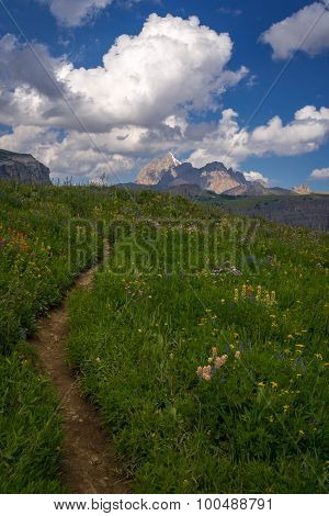 Grand Teton Hiking Trail 4