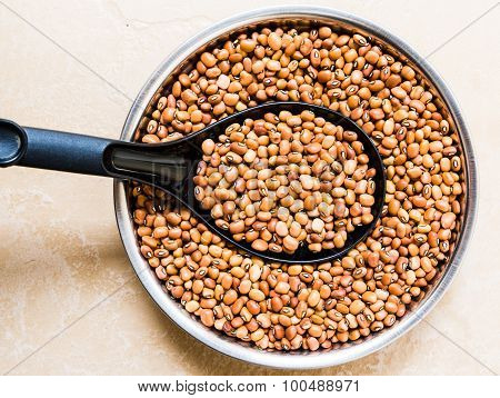 Dark variety cowpea kept on a bowl on a plain background