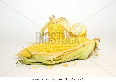 Several Ears Of Corn On Over White