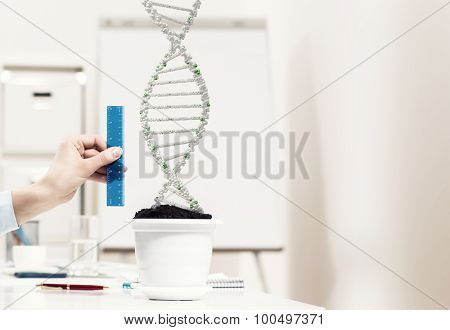 Close up of male hand measuring DNA molecule with ruler