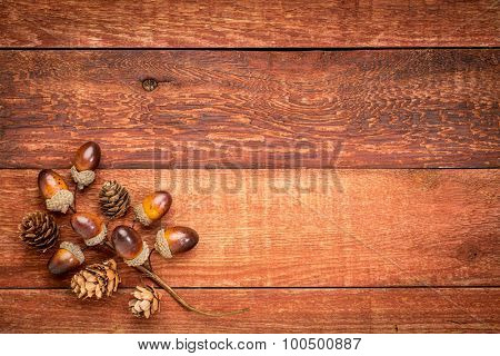 grunge red barn wood  background with acorns and cones fall decoration