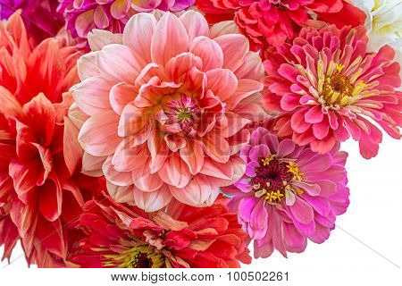 Zinnias and dahlias in a summer bouquet.